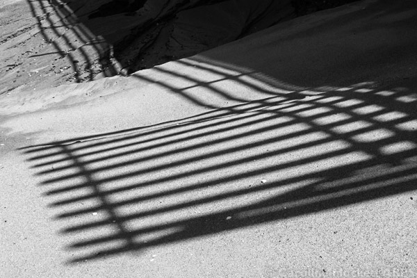 Shapely Shadows In The Sand