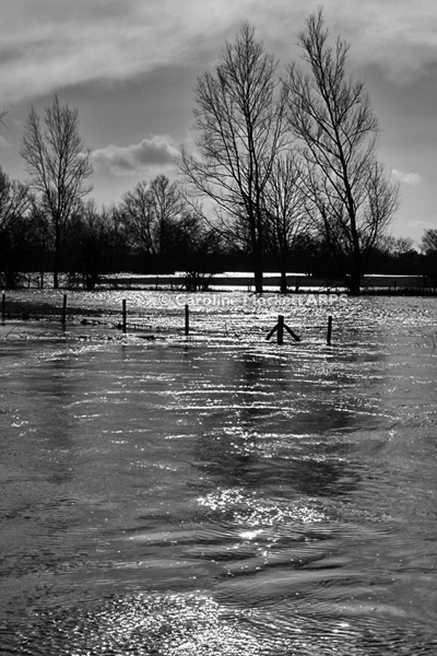 Wet Under Foot