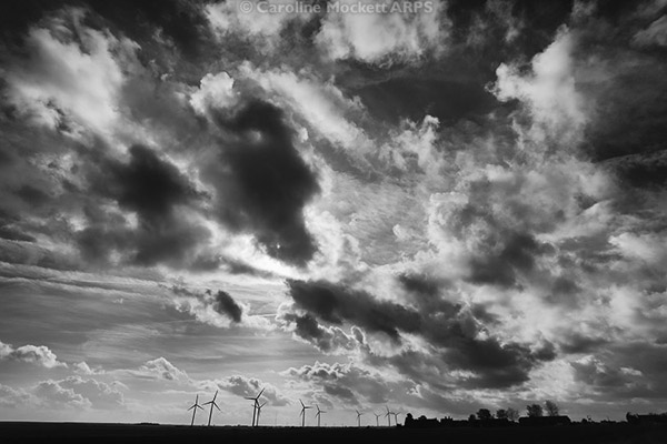 Windswept Windfarm