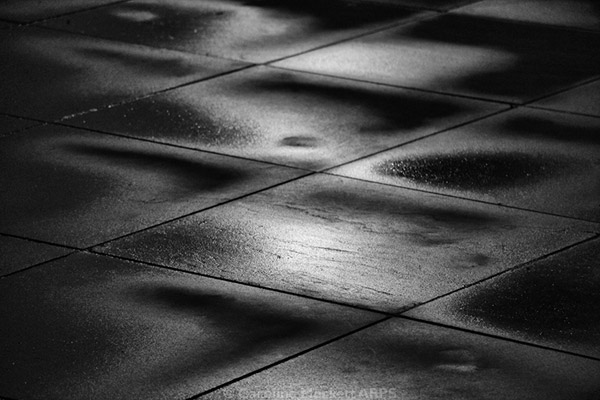 Light On A Wet Pavement