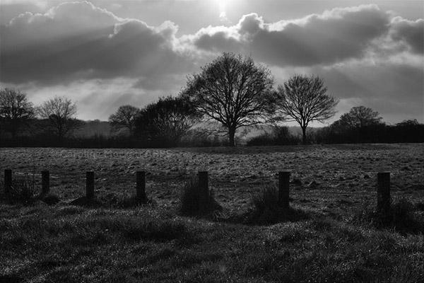 Sunburst On The Common