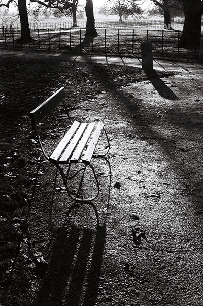 Long Shadows And A Seat