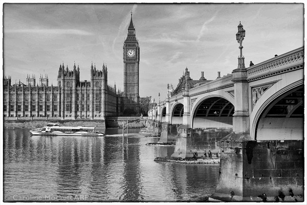 Westminster At Low Tide