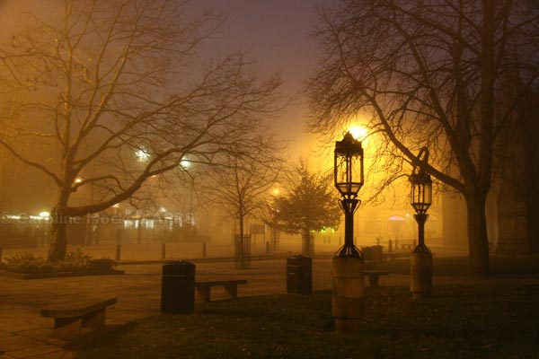 Foggy Evening By The Cathedral