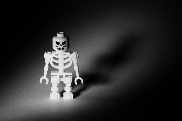 Meet Bones