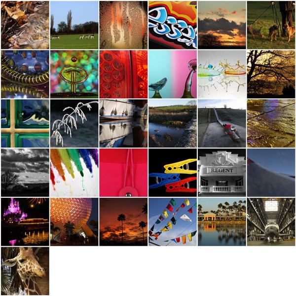Project 366 - January 2012