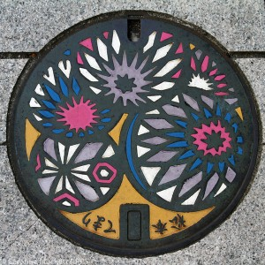 Colourful Flowers - Matsumoto