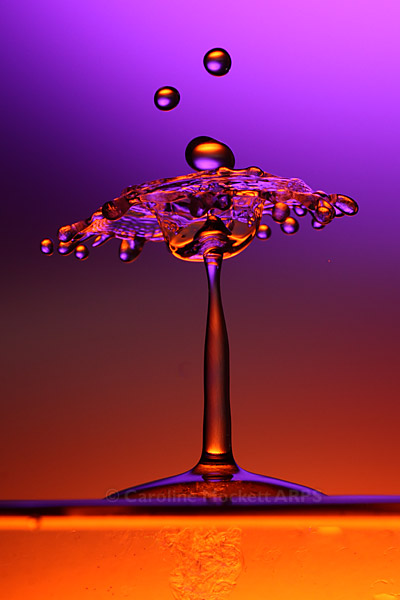 Purple Splash #4