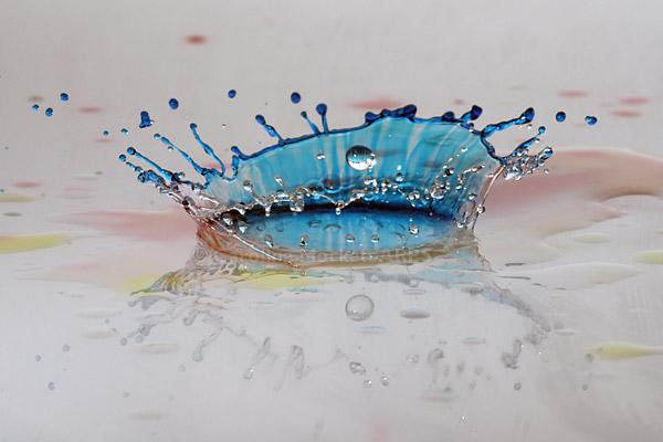 Blue Coronet