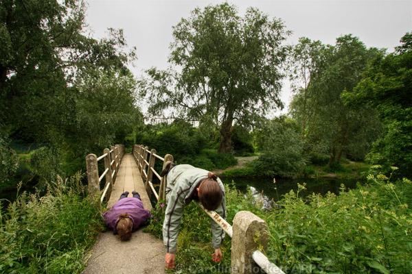 Face Down Tuesday – Sandford Mill Footbridge Edition