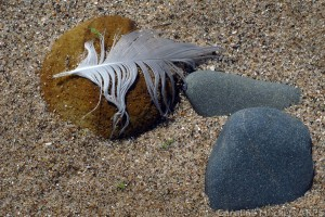 Two Pebbles And A Feather
