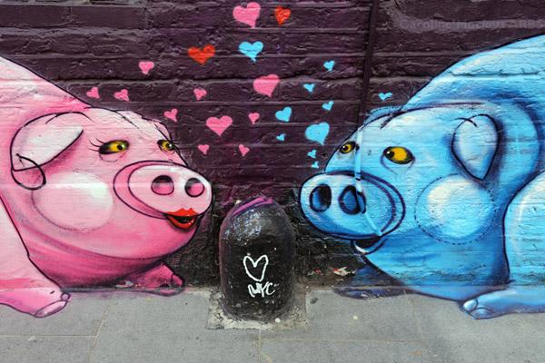 Porcine Love