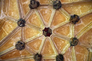 Circle In The Roof