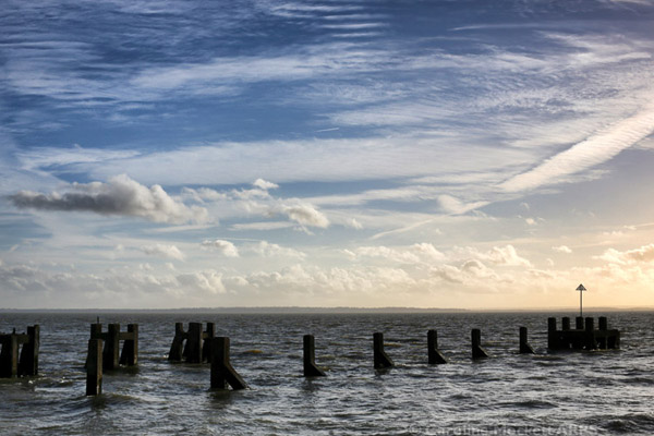 Groynes And Cloudscape