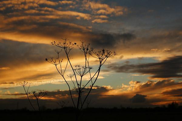 Histon Sunset
