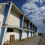 Wavy Pavilion