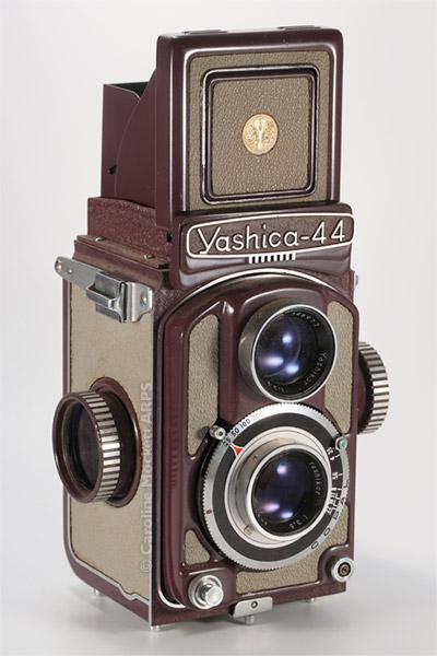 Yashica - 44A Rose