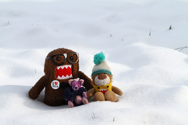 Geeky, Dai and Leo enjoy the snow
