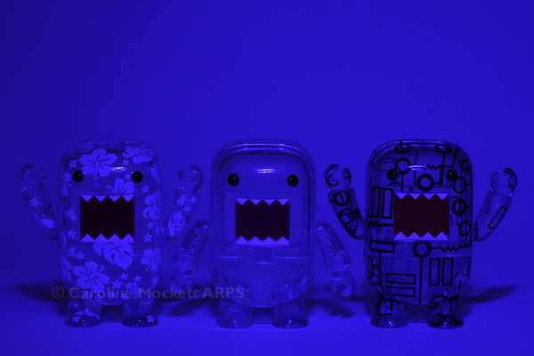 Blue Boys Say Grrr!