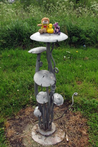 Magic Mushrooms!
