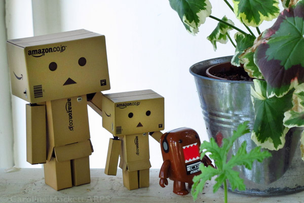 Big Danbo, Danbo and Timmy In The Shrubbery