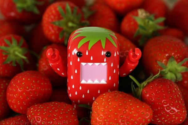 The Crunchy Strawberry