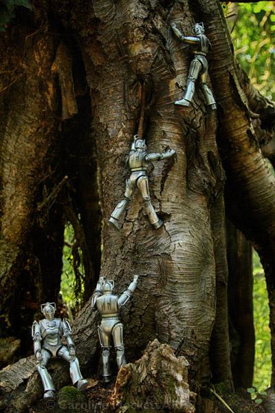 Unsocial Climbers