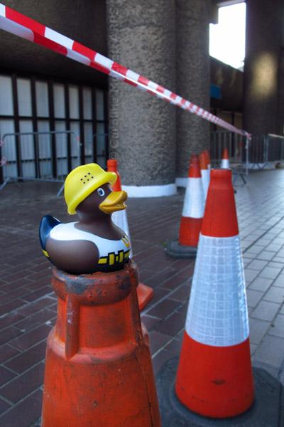 Construction Duck