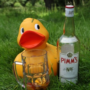 Pimms And Punting!