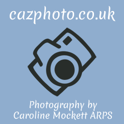 Caz Photo Home