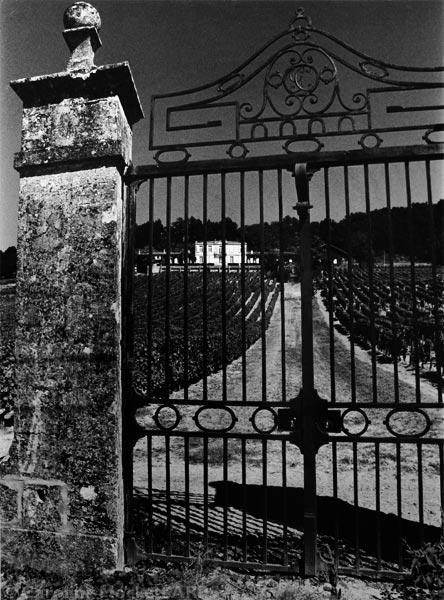 Gateway To A Vineyard